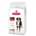 Hill's Adult Large Breed Advanced Fitness con cordero
