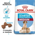Royal Canin Medium Starter 12 Kg
