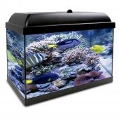 Kit Acuario Aqualed Pro Hydra 25 Agua Salada