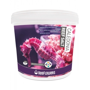 Reeflowers Caledonia Reff Salt 22,5 Kg