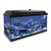 Kit Acuario Aqualed Pro Hydra 120 Agua Salada