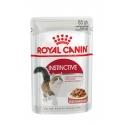 Royal Canin Instinctive en salsa
